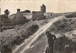 Cotes D'armor : ILE De BREHAT : Paysage De L'intérieur De L'ile (cpsm) - Ile De Bréhat