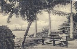 Amérique Du Sud - SURINAM - SURINAME - Op De Reede Van Paramiribo - Surinam