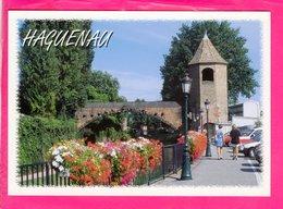 Cp  Carte Postale  - Haguenau - Haguenau