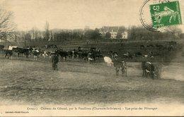 CHATEAU DU GIBAUD(VACHE) FOUILLOUX - France