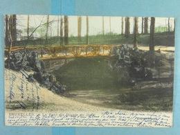Bruxelles Le Pont Du Diable Au Bois (Lagaert Colorisée) - Forêts, Parcs, Jardins