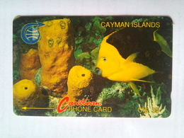 3CCIA CI$30 Fish - Cayman Islands