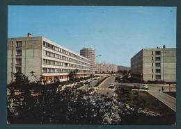 95 - ARGENTEUIL - Rue Du Coudray - Argenteuil