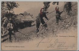 Faucheuse A Champery - Photo: Jullien Freres No. 3099 - Stabstempel: Sierre Siders - VS Valais
