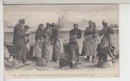 35 - CANCALE- Travail Des Huîtres Dans Les Parcs De Lehoërff Auguste Fils - Cancale