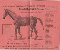 Publicité Illustrée Guide Santé Des Animaux Cheval Porc Chien Basse-cour Mouton Boeuf & Vache Méré De Chantilly Orléans - Publicités