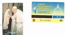 VATICANO-VATICAN-VATICAN CITY  CAT. C&C    6134 - PAPA GIOVANNI PAOLO II  (  1978.2005) - Vatican