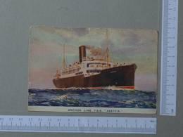 NAVIOS    - ANCHOR LINE TSS -  ASSYRIA -   2 SCANS  - (Nº22022) - Ferries