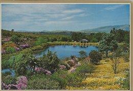 General View Of Caledon Gardens. Cape.  H-1343 - Afrique Du Sud