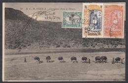 N° 56 + N° 84 + N° 103 Sur CP Au Départ De Djibouti Le 25/09/1924 - Briefe U. Dokumente