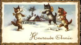 CHATS - Mignonette - Petite Image - - Vieux Papiers