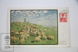 "Antique Illustrated Postcard ""Volkmann Frühling Auf Der Weide"""" - Edited Druck & Verlag - Sheeps - Ilustradores & Fotógrafos"