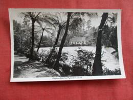 Pukrkura Park  New Plymouth New Zealand ---------Postcard Size  Blank Back Photo-------  Ref 2916 - New Zealand