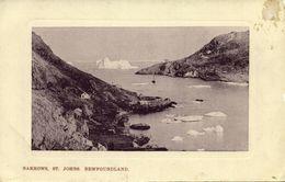 Canada, St. JOHN'S, Newfoundland, Narrows (1910s) Postcard - St. John's