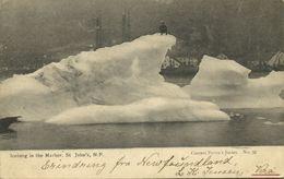 Canada, St. JOHN'S, Newfoundland, Iceberg In The Harbor (1905) Postcard - St. John's