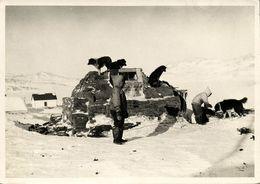 Canada, LABRADOR, Hebron Eskimoes By Sod-House (1950s) Moravian Mission Postcard - Newfoundland And Labrador