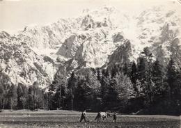 Jezersko 1960 - Slowenien