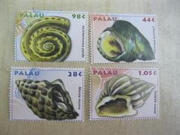 Palau Marine Life Shells I201804 - Palau