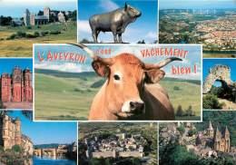 AUBRAC  La Vache Millau Rodez Espalion La Couvertoirade   30 (scan Recto-verso)MA1990Bis - Laguiole