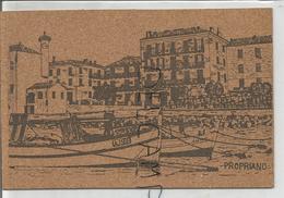 Carte En Liège. Le Port De Propriano (Corse Du Sud). Hôtel Bellevue (?). Barques. - Cartes Postales