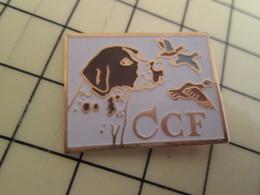 Pin1215c Pin's Pins / Beau Et Rare / CCF CLUB DU CHIEN FRANCAIS EPAGNEUL CANARD - Animals