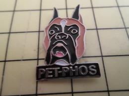 Pin1215c Pin's Pins / Beau Et Rare / PET-PHOS TETE DE CHIEN NOIR BOXER - Animals