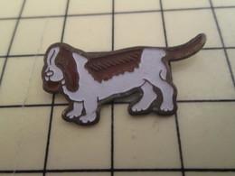 Pin1215c Pin's Pins / Beau Et Rare / CHIEN MARRON ET BLANC GENRE BASSET DE COLOMBO - Animals