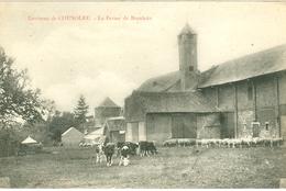 Nord Environs De Cousolre La Ferme De Branleux - Autres Communes