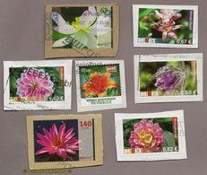 L13) Privatpost - 7 Werte - Blumen Blüten - Sonstige