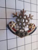 Pas Pin's Mais BROCHE : ESF ECOLE DU SKI FRANCAIS 2 ETOILES DOREES - Winter Sports