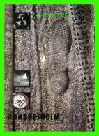 ADVERTISING - PUBLICITÉ - KRABBESHOLM - GO-CARD No 2599 IN 1996 - - Publicité