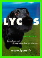 ADVERTISING - PUBLICITÉ - LYCOS - LE MEILLEUR AMI DE VOS RECHERS SUR INTERNET - CHIEN - DOG - - Publicité