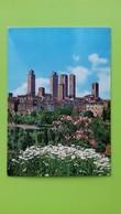 Cartolina SAN GIMIGNANO - SI - Viaggiata - Postcard - Panorama - Siena