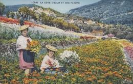 Métiers - Cueillette Fleurs - Parfum - Femmes Cote D'Azur - Cachet Grasse 1934 - Artisanat