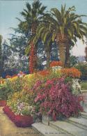 Agriculture - Jardins Fleurs - Cultures