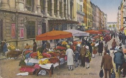 Agriculture - Marchands Fleurs - Nice - Cultures