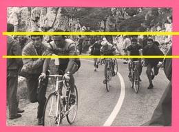 Ciclismo F. LIEVORE Di Breganze Molteni Con Ciclisti Kelvinator Fagor Giro Italia 1968 Grappa Sport Cyclisme Cycling - Ciclismo