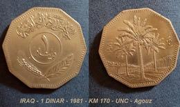 IRAQ - 1 DINAR - 1981 - KM 170 - UNC - Agouz - Iraq