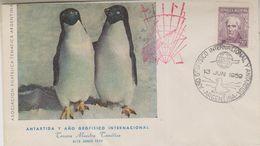 Argentina 1959 Antartida Y Ano Geofisco Internacional (cover With Penguins) Ca 13 Jun 1959 (38467) - Argentinië