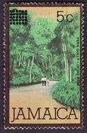 JAMAIQUE   1984 -  YT 602 - Surchargé 5 Sur 6  - Fern Gully - Jamaica (1962-...)