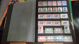 D416 ALBUM LUXEMBOURG NEUFS + DIVERS A TRIER BELLE COTE DÉPART 10€ - Stamps