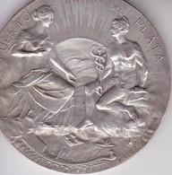 PUERTO DE MAR DEL PLATA. INAGURACION DE LAS OBRAS 1913. J M LUBARY. MEDALLON.-TBE-BLEUP - Andere