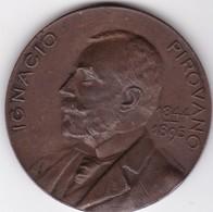 IGNASIO PIROVANO 1844-1895. INAGURACION MONUMENTO. 1900. BELLAGAMBA Y ROSSI. MEDALLA-BLEUP - Andere
