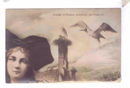 ALSACE LORRAINE CIGOGNE Carte Geante Types Croissant Ch Fontane - Lorraine