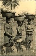 N°642 RRR LR 10 GUINEE FEMME CAIMAN - French Guinea