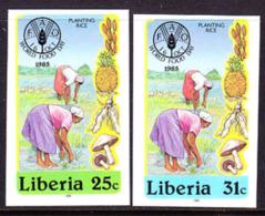 Liberia (1985) Women Harvesting. Set Of 2 Imperforates  Scott Nos 1041-2, Yvert Nos 1030-1. - Liberia