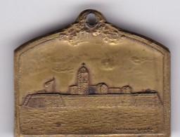 DEFENSA DE PATAGONES 1827-1927. COTUZZO Y PIANA. PLAQUETA.-BLEUP - Tokens & Medals