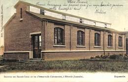 Héverlé (Louvain) - Institut Du Sacré-Coeur - Repasserie (Edit. Van Cortenbergh, Gekleurd, 1905) - Leuven