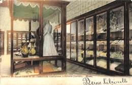 Héverlé (Louvain) - Institut Du Sacré-Coeur - Musée (Edit. Van Cortenbergh, Gekleurd, 1905) - Leuven