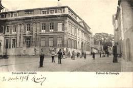 Université De Louvain - Cabinet De Zoologie (animatie, 1908....centre Du Bord Supérieur) - Leuven